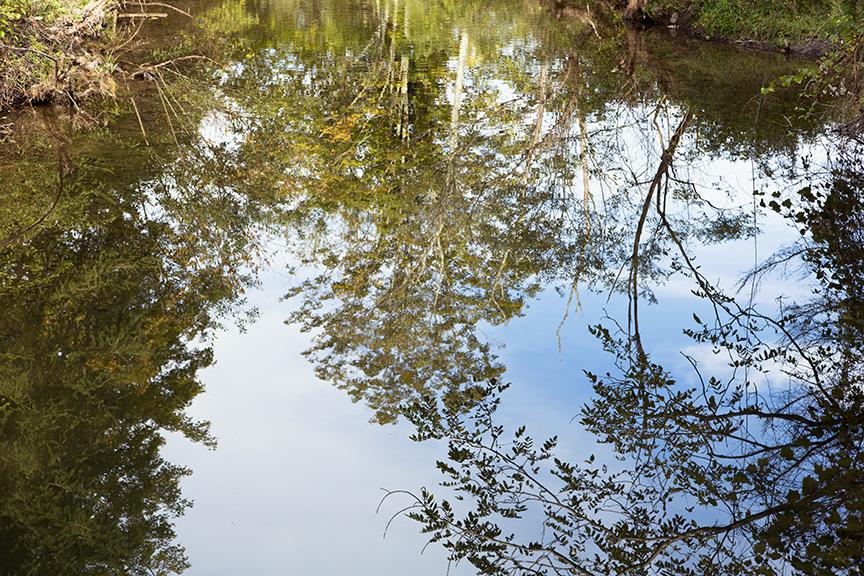 Agloe, NY New York Paper Town Reflections on the Beaverkill, #1